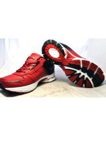 4acb50c4361702 Этим противоречивым параметрам удовлетворяют спортивные кроссовки  китайского бренда Bona.