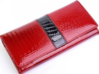 c195f0822481 Не менее модные аксессуары могут быть изготовлены из искусственных  материалов: несомненным хитом этого сезона стали силиконовые кошельки-монетницы  различных ...