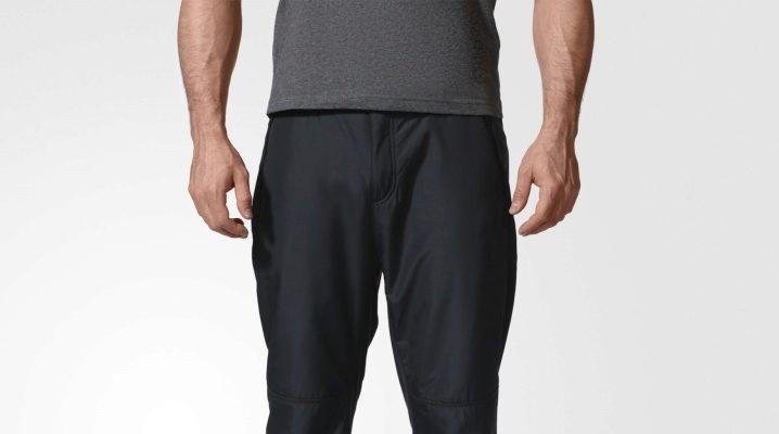 Мужские зимние штаны