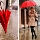 Зонты Zest для всей семьи