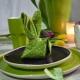 Как красиво сложить салфетки в салфетницу?