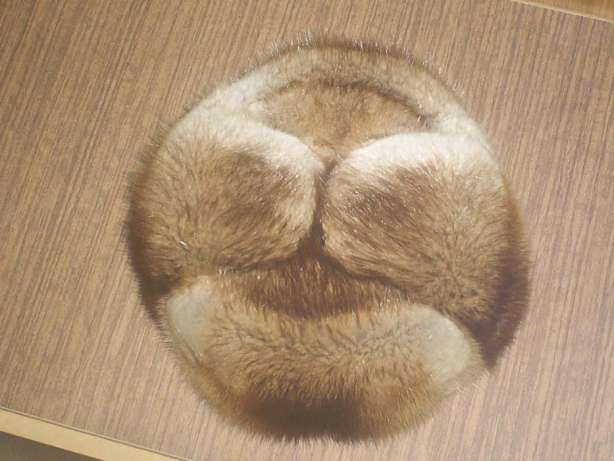 Пыжиковые шапки из чего делают фото