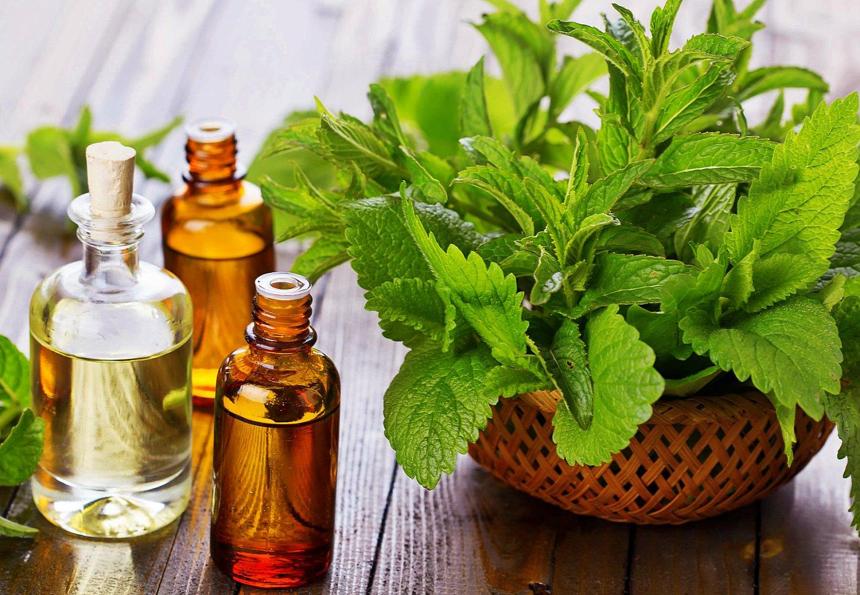Эфирное масло мяты для волос, рецепты домашнего применения