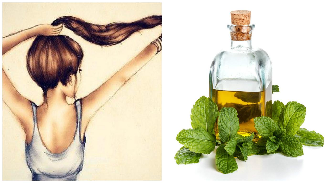 Масло мяты для роста волос: применение, рецепты