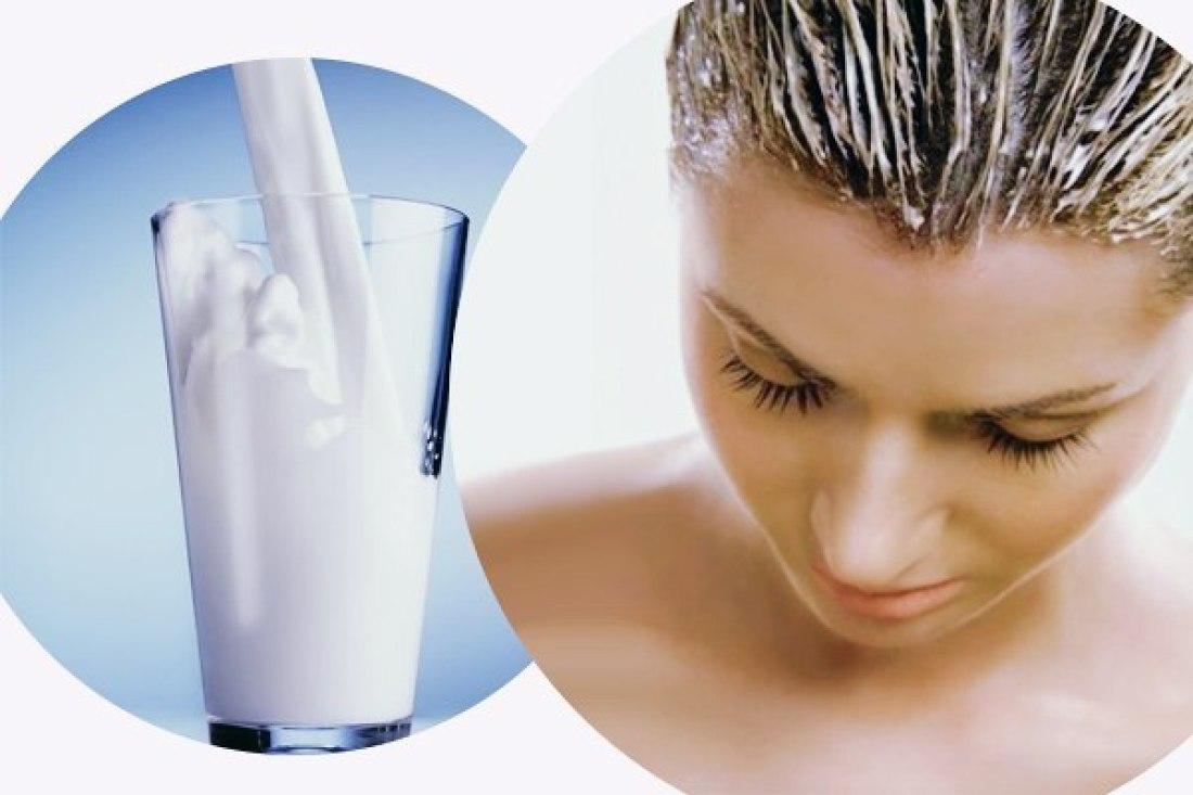 Наносить репейное масло на сухие или влажные волосы