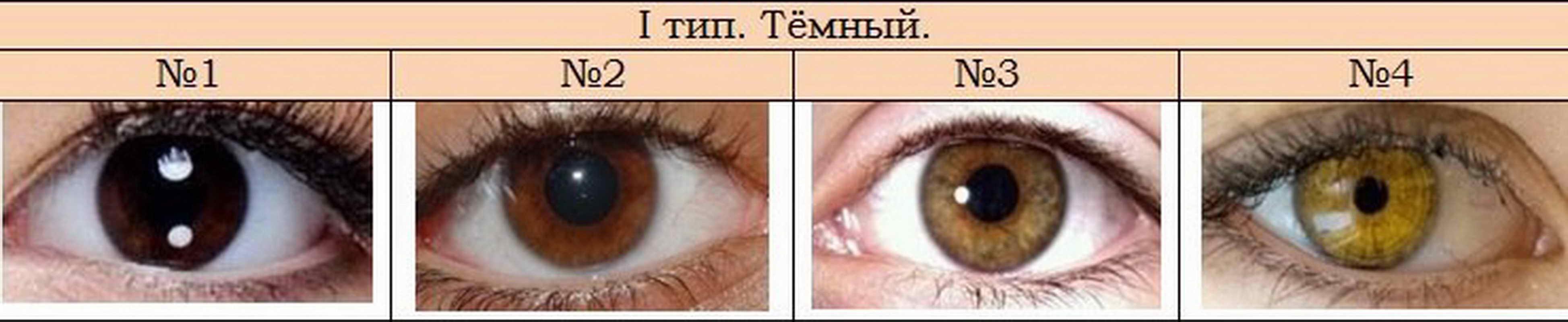Как изменить цвет глаз? Способы без линз и операций 64