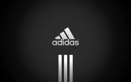 Зимние ботинки Адидас (42 фото): женские Adidas клима проф (climaproof ), terrex winter, holtanna, palladium, senia и нео