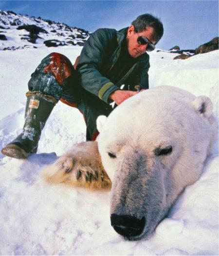 Ботинки Baffin в Арктике и в зимнем городе (23 фото)