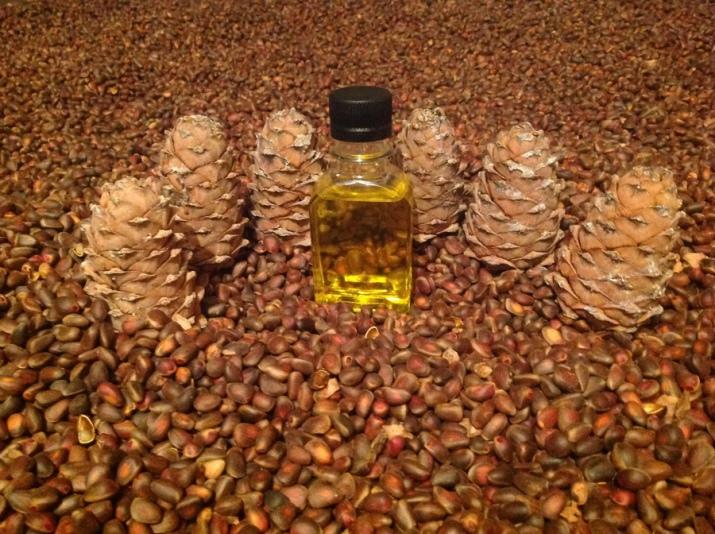 Кедровое масло домашних условиях